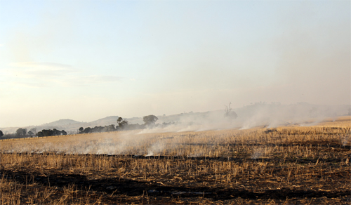 Stubble burning west of Newstead, 8th April 2013.