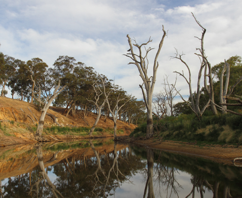 Loddon-River