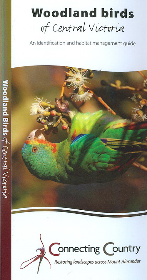 woodland-bird-brochure