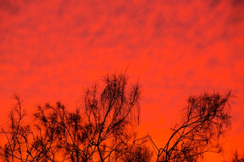 Sunset3lr