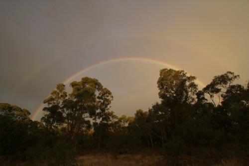 Summer evening rainbow